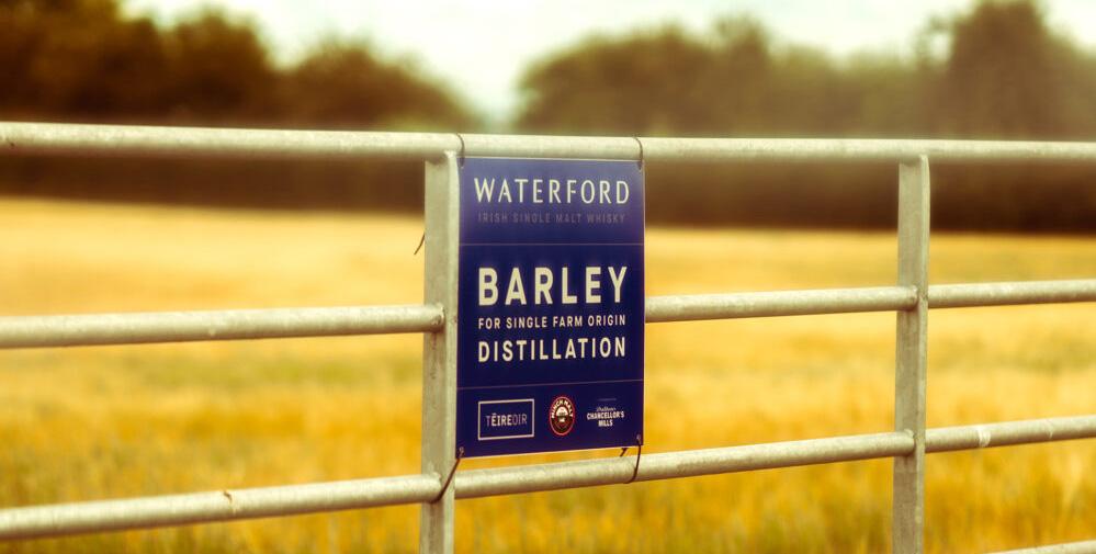 Wateford barley